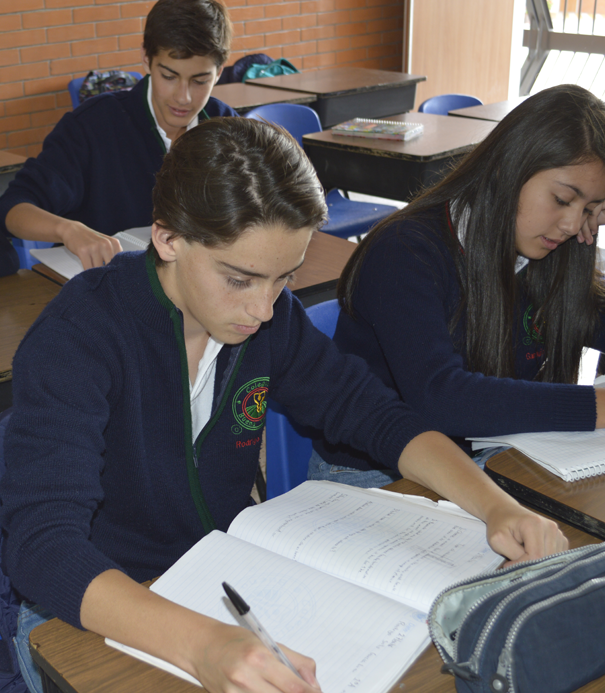 Colegio Buena Tierra, English Department