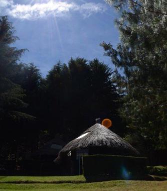 Colegio Buena Tierra, Campamentos